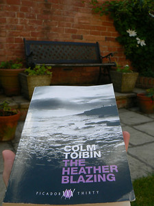 0102 | The Heather Blazing  Colm Toibin