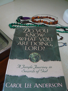 0204 | Do You Know What Youre Doing Lord?  Carol Anderson
